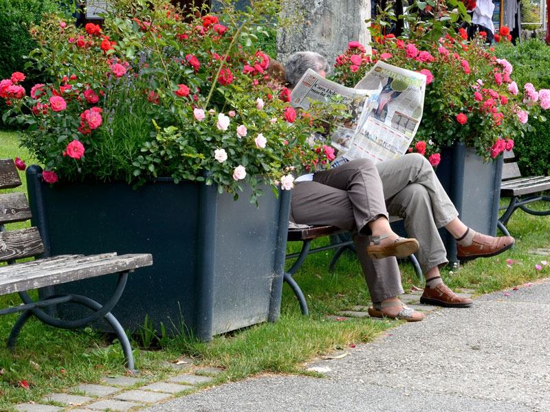 News default Aree Verdi