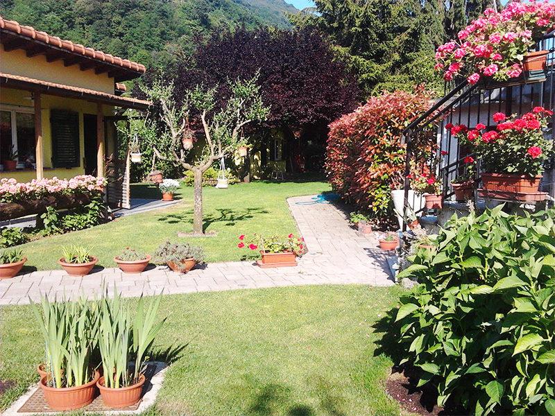 Servizi Giardini Posa Semina Prato piante fiori Aree Verdi