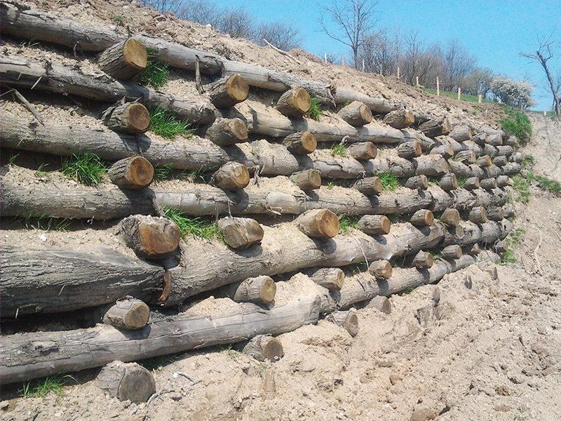Muro cellulare con pali di castagno