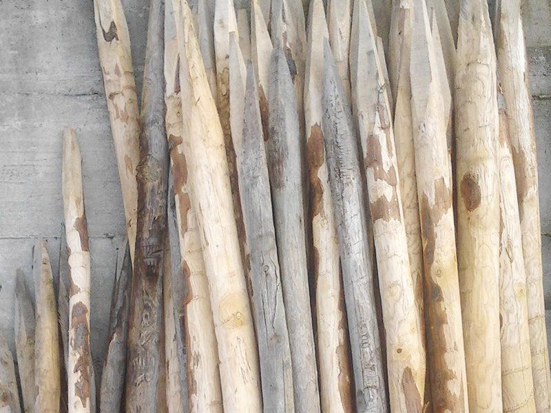 Servizi Legno Pali di castagno Aree Verdi